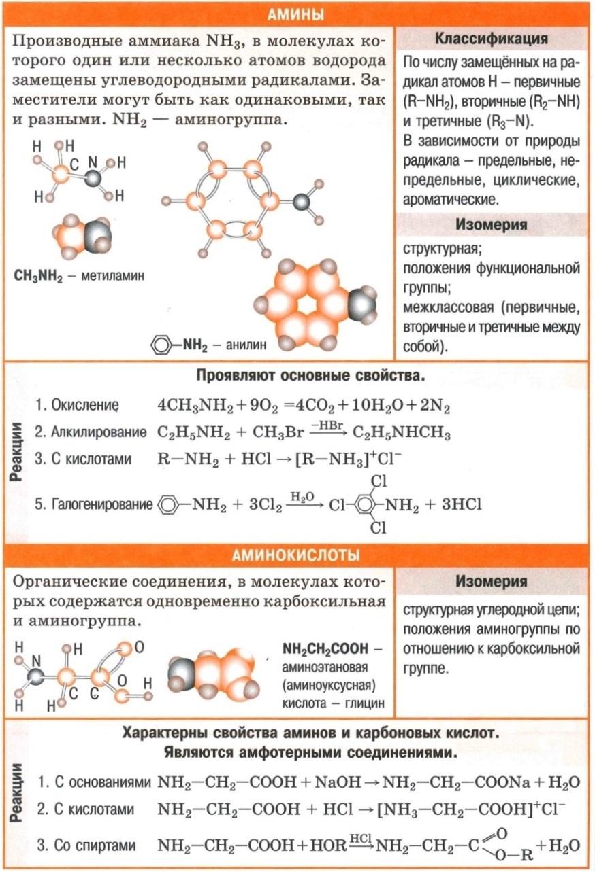 Амины - формулы, классификация, изомерия, свойства (окисление, алкилирование, галогенирование, реакции с кислотами). Аминокислоты - формулы, свойства (реакции с кислотами, с основаниями, со спиртами).