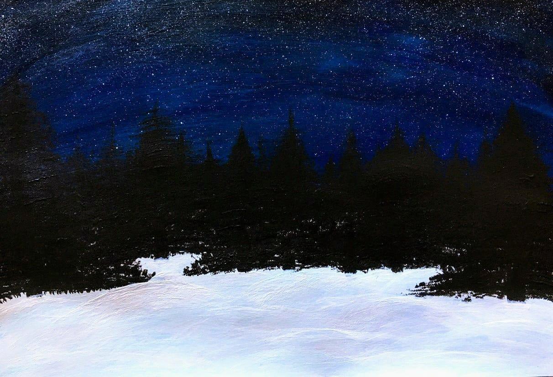 Eesti Lipp, Flag of Estonia, Эстонский флаг - ночной лес зимой