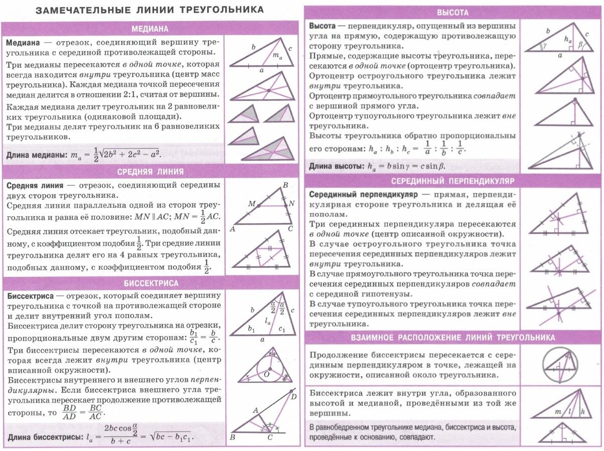 Замечательные линии треугольника. Медиана, средняя линия, биссектриса, высота, серединный перпендикуляр, взаимное расположение линий треугольника.