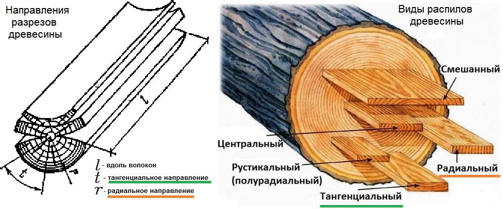 Что такое тангенциальное, радиальное и вдоль волокон направление для древесины