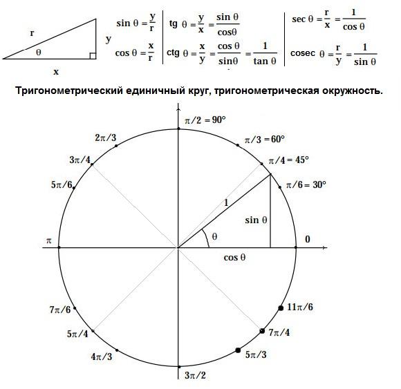 Тригонометрический единичный круг, тригонометрическая окружность, введение синуса и косинуса.