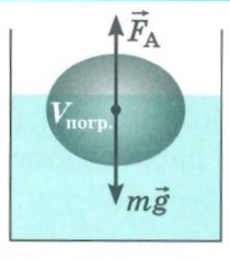 Гидромеханика и аэромеханика.   Закон Архимеда