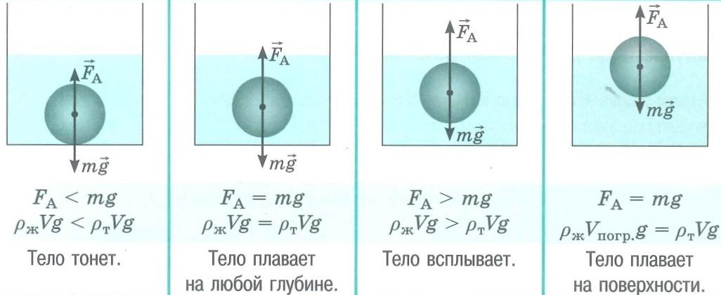 Гидромеханика и аэромеханика. Условие плавания тел (тело тонет, тело всплывает, тело плавает на любой глубине, тело плавает на поверхности)